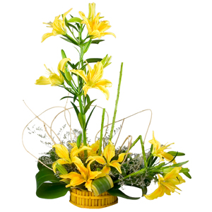 Glorious Half Dozen Stemmed Yellow Lilies in a Splendid Cluster