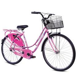 Effervescent BSA Ladybird Splash Bicycle<br>