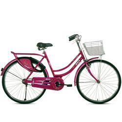 Make My Day BSA Rangoli Bicycle<br>