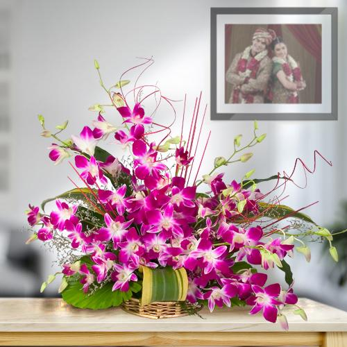 Expressive Cluster of 10 Pretty Orchids