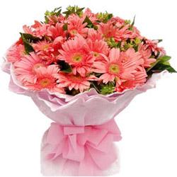 Expanding Essentia Gerberas Bouquet