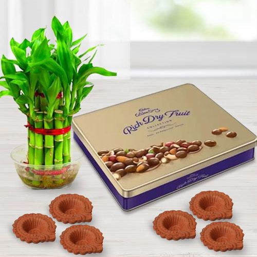Eco-Friendly Diwali Gift of Cadbury Chocolates, Good Luck Bamboo Plant n Diya