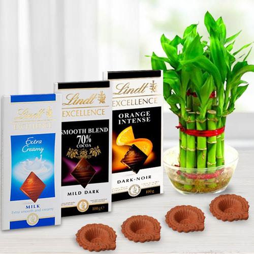 Environment Friendly Diwali Gift of Plant, Lindt Chocolates n Diya