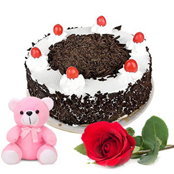 Wonderful Black Forest Cake with Fresh Rose and Teddy