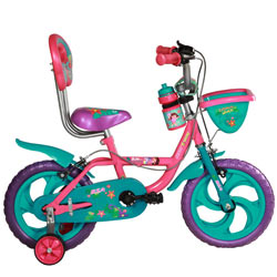 Tech-Fondled SBSA Champ Dora Bicycle