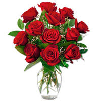 Attention-Getting Red Roses Explosion in a Vase