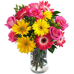 Multicolored Florals in a Vase