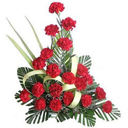 Delightful Red Carnations Arrangement