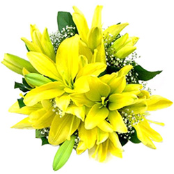 Anniversary Silky-Smooth Yellow Lilies Bouquet