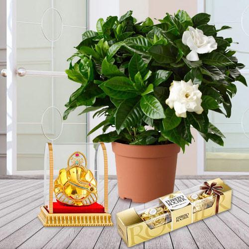 Fragrant Jasmine Planter with Ganesh Idol N Chocolates