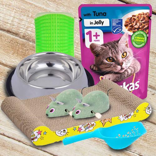 Wonderful Kitten Gifts Hamper